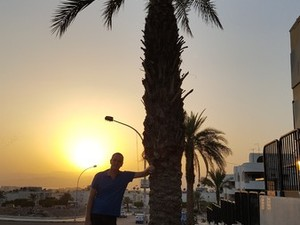 Palmboom in Aqaba