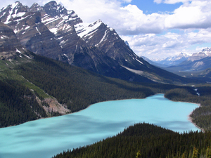 Peyto Lake (mooier dan Lake Louise) - Banff NP