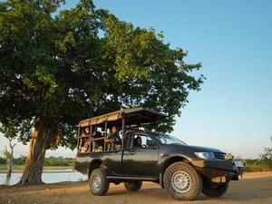 Wilpattu national park - jeep