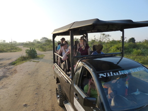 Yala nationaal park - jeep