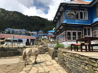 Nepal trekking accommodatie