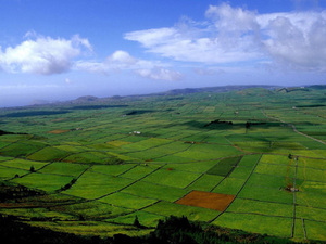 Terceira - glooiend landschap