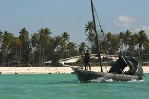 Rondreis Kenia, Tanzania & Zanzibar, 21 dagen kampeerreis