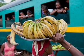 Rondreis Madagascar & Mauritius, 22 dagen
