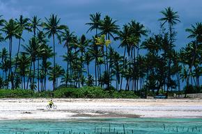 Rondreis Kenia, Tanzania & Zanzibar, 21 dagen lodge/hotelreis