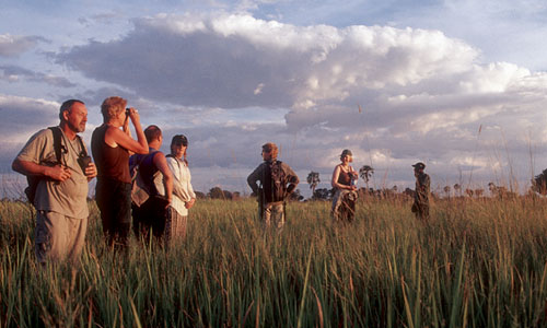 Okavango delta - gamewalk