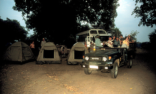 South Luangwa - nightdrive