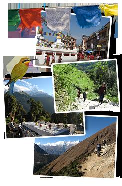 Wandel- en fietsreis Nepal, 17 dagen