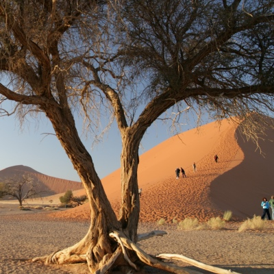 Rondreis Namibië, 16 dagen kampeerreis