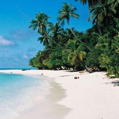 Rondreis Sri Lanka & Malediven, 21 dagen afbeelding