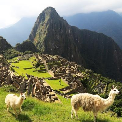 Sfeerimpressie Rondreis Peru, Ecuador & Galapagos, 27 dagen