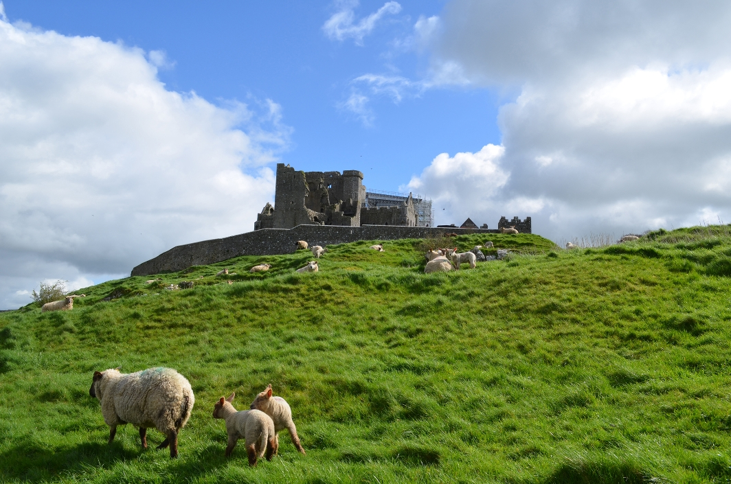 Rock of Cashel Ierland